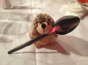 Brillo's spoon